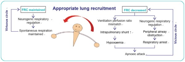 Fig. 3 Relationship between lung recruitment and FRC