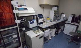 NICUの検査室です。微量検体にこだわり、大抵の検査はここで完結させることができます。