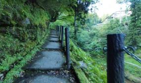 朝は岩手医科大学の松本先生と2人で銀山温泉からもう少し行ったところの滝と坑道を見てきました。