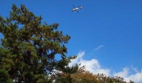ヘリの音がするので空を見上げるとドクヘリが!県病・弘大間の搬送があったのでしょうか?