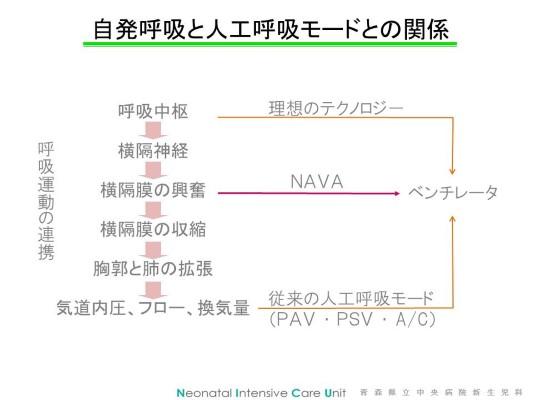 NAVAスライド2 (Custom)
