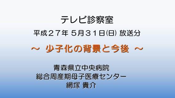 少子化の背景と今後(ワイド)・修正版 (Custom) (2)